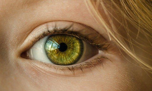 gradówka na oku